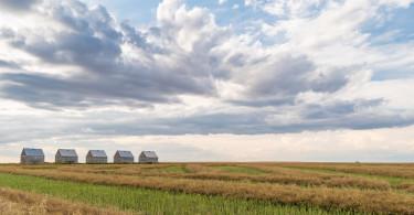 Alberta Canada Farm Field